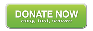 Donate-now-button1